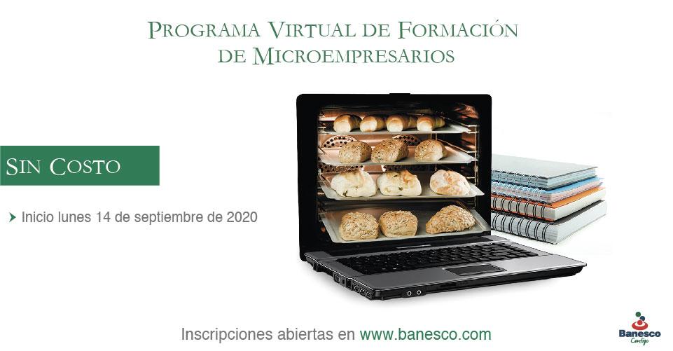 Programa de Formación Virtual